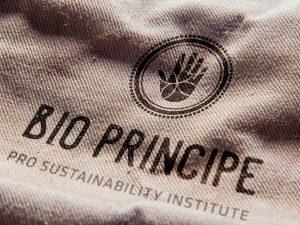 Nave16 | Bio Principe | Branding